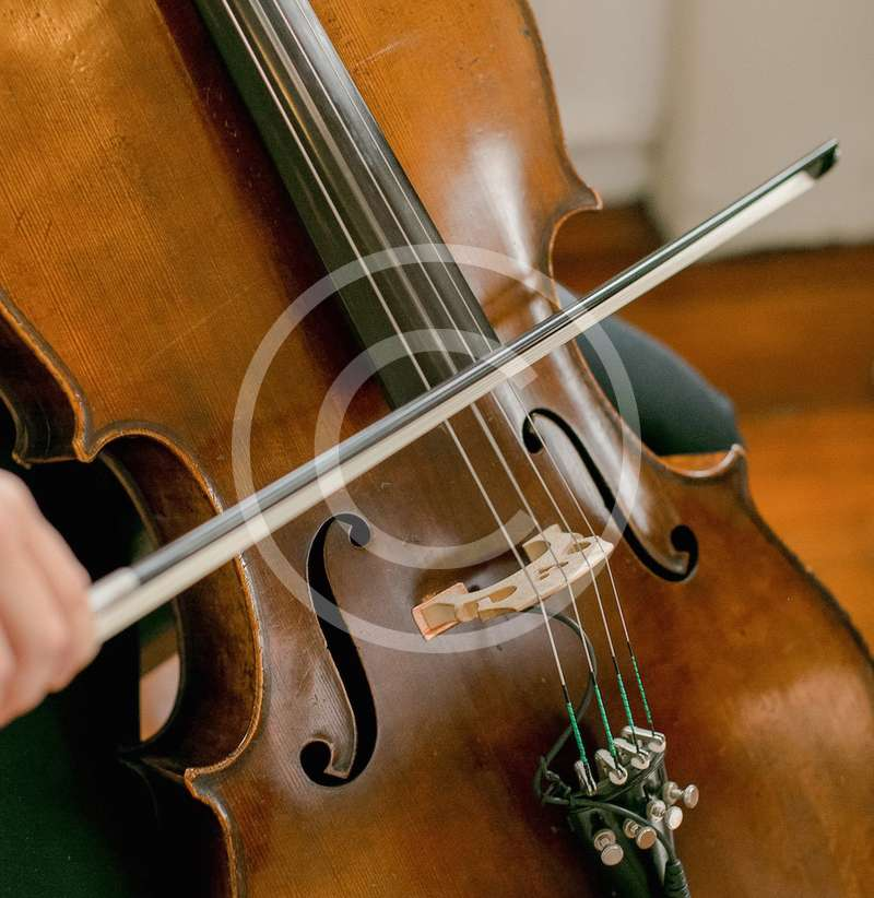5 Popular Viola performances